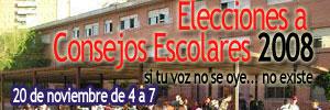 Consejos Escolares 2008